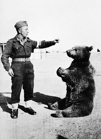 ポーランド兵とヴォイテク